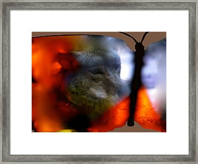 Butterfly Animals Collection  Framed Print