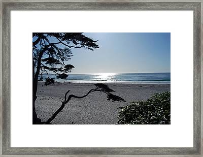 Carmel Sunrise Framed Print