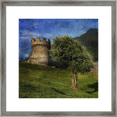 Castle Framed Print by Joana Kruse