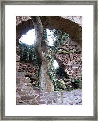 Castle Ruin Noerten-hardenberg Framed Print by Valentina Vassilieva