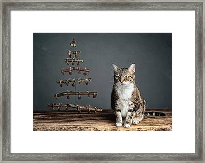 Cat Christmas Framed Print by Nailia Schwarz