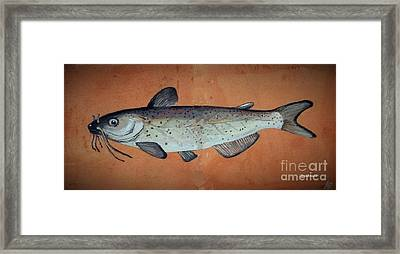 Catfish Framed Print by Andrew Drozdowicz