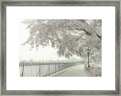Central Park Reservoir Framed Print