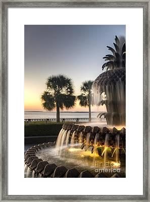 Charleston Pineapple Fountain Sunrise Framed Print by Dustin K Ryan