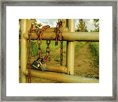 Padlocks And Chains Framed Print
