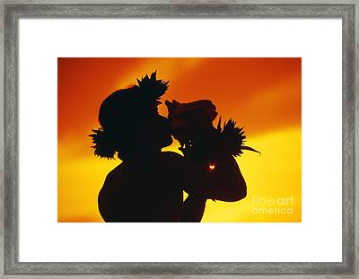 Conch Shell Blower Framed Print by Ron Dahlquist - Printscapes