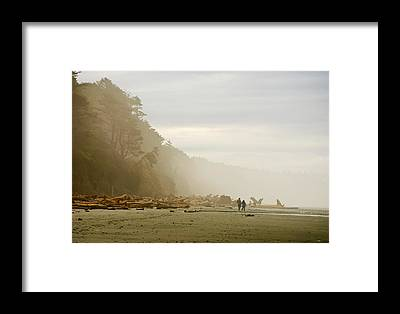 Washington Driftwood Beach Fog Framed Prints