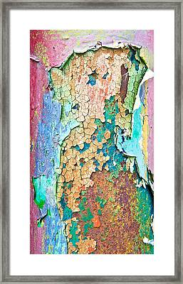 Cracked Paint Framed Print by Tom Gowanlock