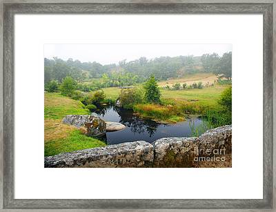 Creek Framed Print by Carlos Caetano