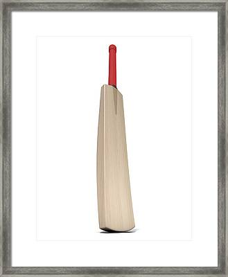 Cricket Bat Framed Print