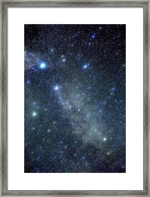 Cygnus Constellation Framed Print