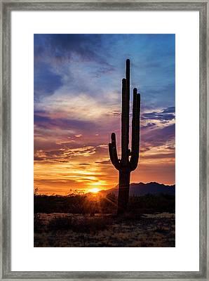 Framed Print featuring the photograph Desert Beauty  by Saija Lehtonen