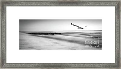 Framed Print featuring the photograph Desire Light Bw by Hannes Cmarits