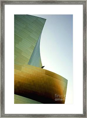 Disney Concert Hall 6 Framed Print by Micah May