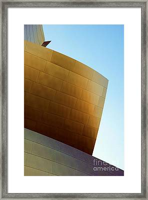 Disney Concert Hall 7 Framed Print by Micah May