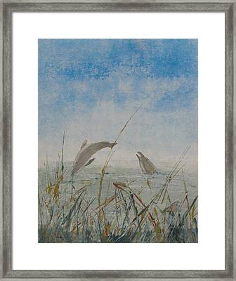 Dolphin Frolic Framed Print by Libby  Cagle