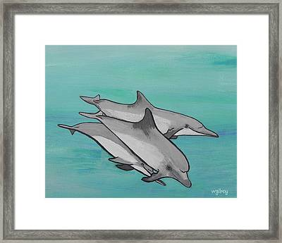 Dolphins Framed Print by W Gilroy