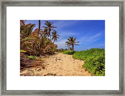 Framed Print featuring the photograph Dominicana Beach by Peter Lakomy