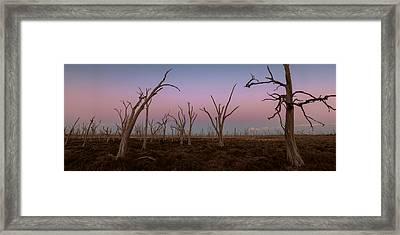 Dusk At Dumbleyung Lake Framed Print