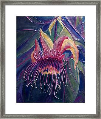 Earth Light Series Lights On  Framed Print