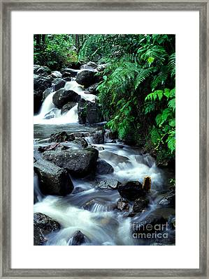 El Yunque Waterfall Framed Print by Thomas R Fletcher