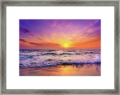 Evening Flight Framed Print by Dmytro Korol