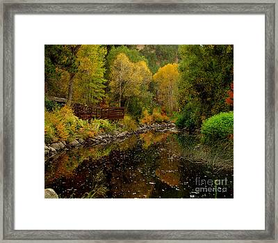 Fall In The Rocky Mountains Framed Print by Marilyn Magee