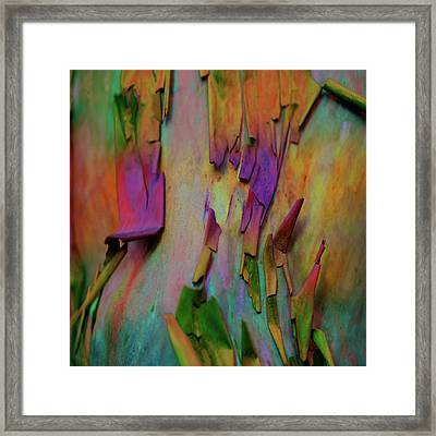 Fearlessness Framed Print