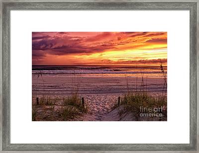 Florida Sunset Framed Print by Mechala Matthews