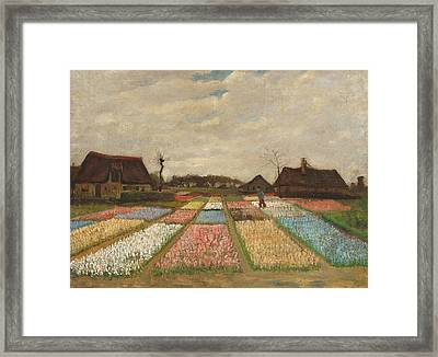 Flower Beds In Holland Framed Print