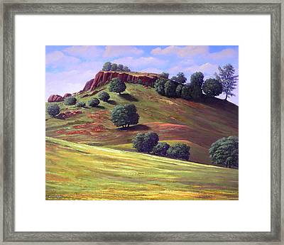 Flowering Meadow Framed Print