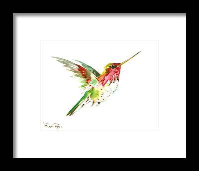 Flying Hummingbird Framed Prints