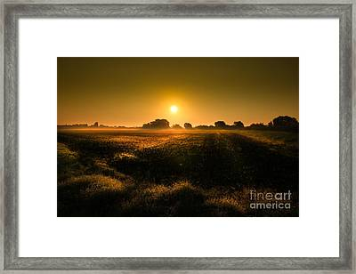 Foggy Morning Framed Print by Franziskus Pfleghart