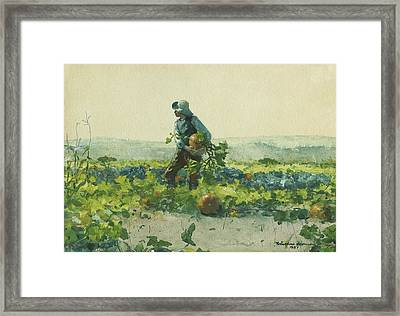 For To Be A Farmer's Boy Framed Print
