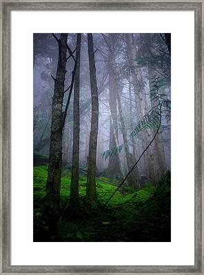 Forest Mysteries Framed Print