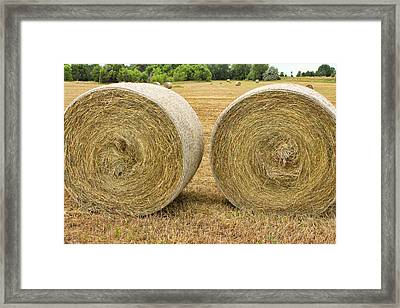 2 Freshly Baled Round Hay Bales Framed Print by James BO  Insogna