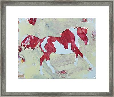 Galloping Pinto Framed Print