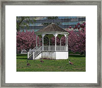 Gazebo In The Park Framed Print