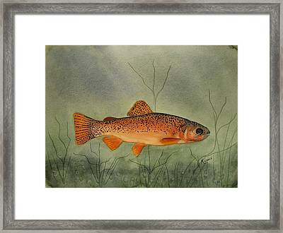 Gila Trout Framed Print