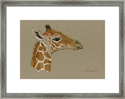Giraffe Head Study  Framed Print by Juan  Bosco