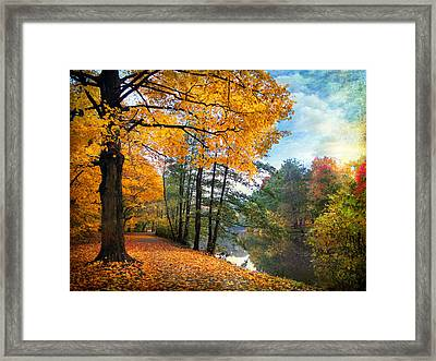 Golden Carpet Framed Print