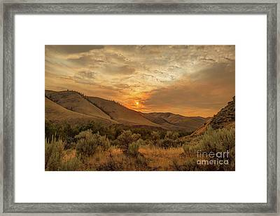 Golden Sunset Framed Print by Robert Bales