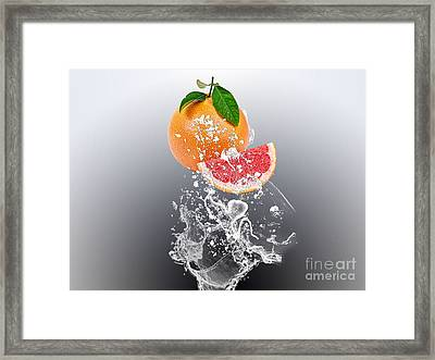 Grapefruit Splash Framed Print by Marvin Blaine