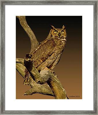 Great Horned Owl Framed Print by Larry Linton