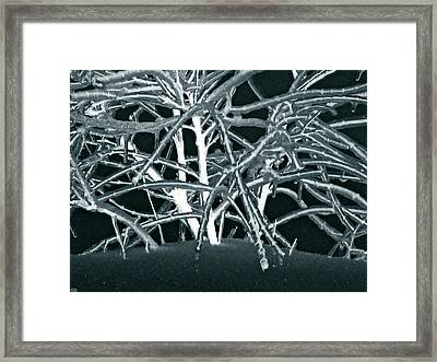 Grounded In Earth  - Series 1 Framed Print by Debra     Vatalaro
