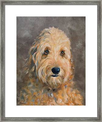 Gunther Framed Print by Diane Daigle