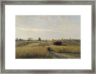 Harvest Framed Print by Charles-Francois Daubigny