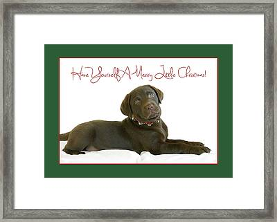 Have Yourself A Merry Little Christmas  Framed Print by Dale Hall