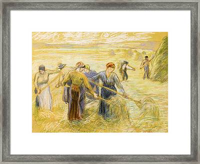 Haymaking Framed Print by Camille Pissarro