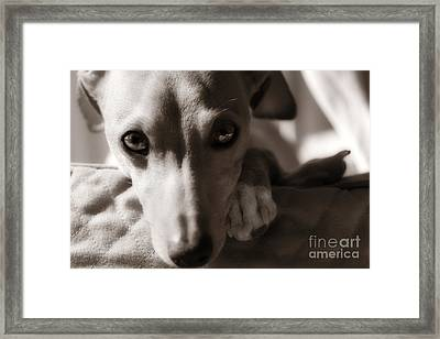 Heart You Framed Print